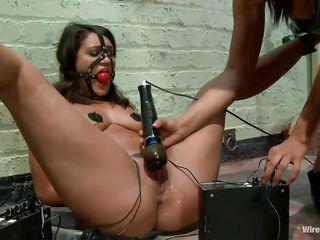 Студенческие секс вечеринки