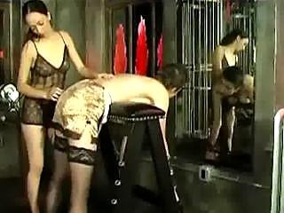 Порно порк бесплатно без регистрации