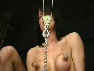 Бдсм члена порно